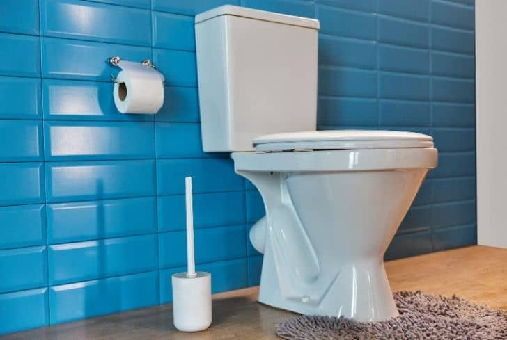 toilet-with-blue-wall