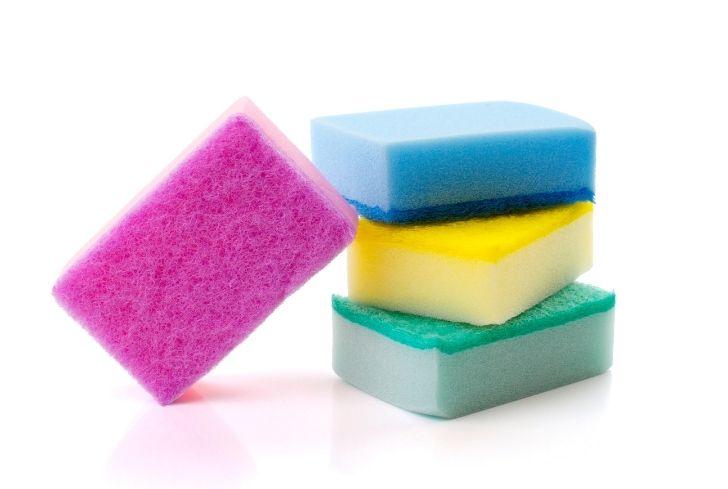 colorful-sponge