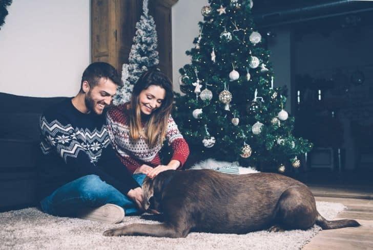 dog-enjoying-with-family-on-carpet