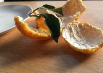 Can You Put Orange Peels in the Garbage Disposal?